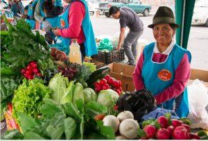 L'agroécologie et l'agriculture paysanne pour préserver la biodiversité
