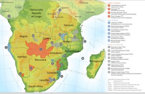 The Contribution of Transfrontier Peace Parks to Peace in Southern Africa