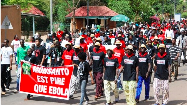 Anti-GMO protesters march against Monsanto in Burkina Faso