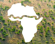Great Green Wall Brings Hope, Greener Pastures to Africa's Sahel