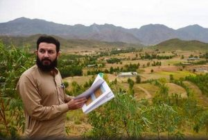 'Billion Tree Tsunami' transforms arid Pakistan region into green gold