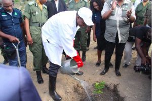 Leading from the Front: Zambia Launches Plant a Million Trees Initiative