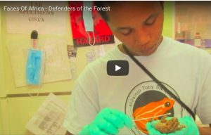 Faces Of Africa – Defenders of the Forest [Madagascar]
