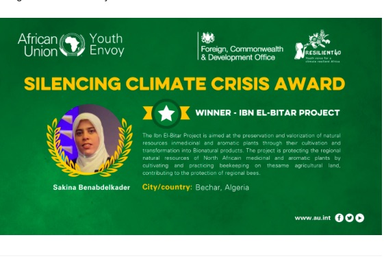 African Union Office of the Youth Envoy: Winners Announced fo Youth Silencing The Guns Awards