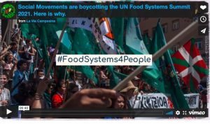 Several Social Movements are boycotting the UN Food Systems Summit, will hold counter mobilizations in July